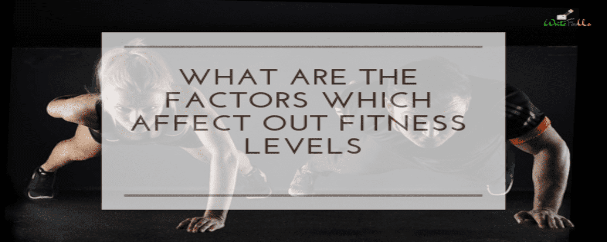 Factors-of-fitness-level