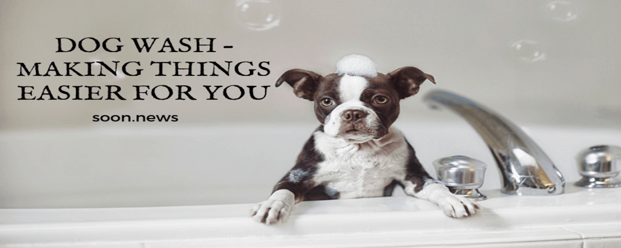 DOG WASH – MAKING THINGS EASIER FOR YOU
