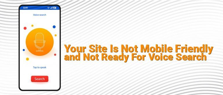 Site Is Not Mobile Friendly & Voice search