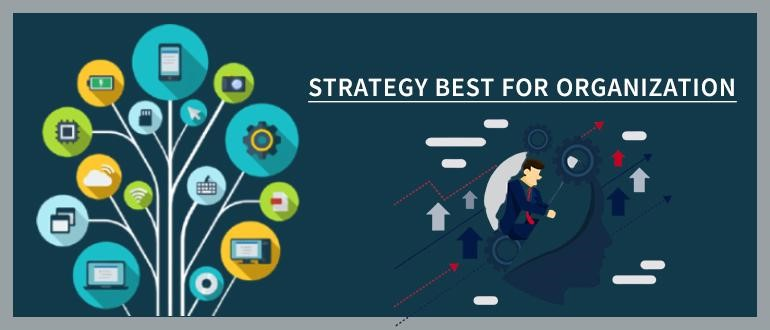 Strategy Best for Organization