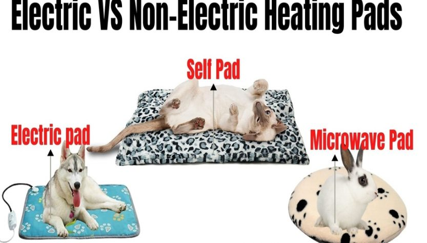 Electric Vs Non-Electric Heating Pads For Pets